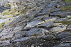 Basalt Chalk Beach Ballintoy 25-02-2017 11-30-51