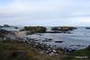 Dunshammer The Little Isles of the Camplie - Basalt Ballintoy Harbour 25-02-2017 11-30-07