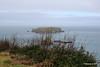 Sheep Island Antrim 25-02-2017 11-05-26