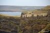 Dunluce Castle Antrim 25-02-2017 14-49-07