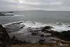 Rinagree Coastal Park 25-02-2017 15-28-07