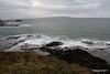 Rinagree Coastal Park 25-02-2017 15-28-56
