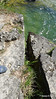 Cave Point County Park Limestone Erosion WI PDM 24-05-2016 09-38-41