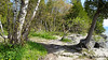 Cave Point County Park Schauer Rd WI PDM 24-05-2016 09-39-40