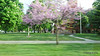 Mason County Courthouse US 10 Ludington MI PDM 25-05-2016 18-00-12