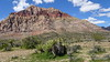 Red Rock Canyon DRM 01-04-2017 11-26-57