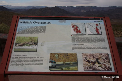 Wildlife Overpasses Lake Mead National Recreation Area Willow Beach View Point Arizona 31-03-2017 10-05-26