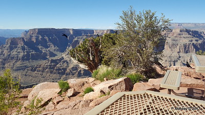 Lunch View Guano Point Grand Canyon 02-04-2017 23-49-04