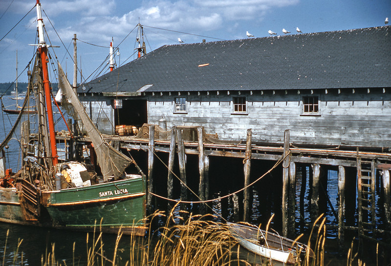 BoothbayHarbor1960