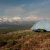 Camping by Mt. McKinley, Alaska