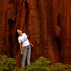 Julie sizing up a sequoia