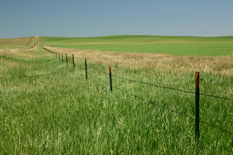 Endless fields in North Dakota
