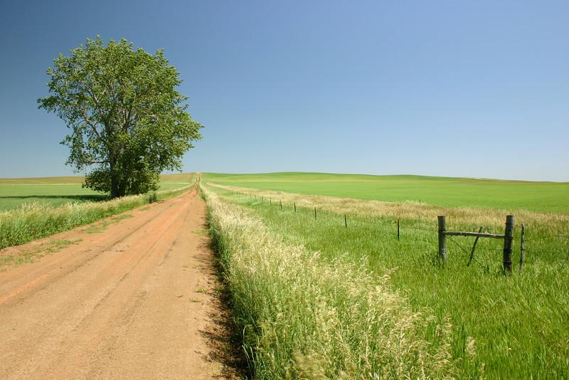 Scenic grasslands in North Dakota