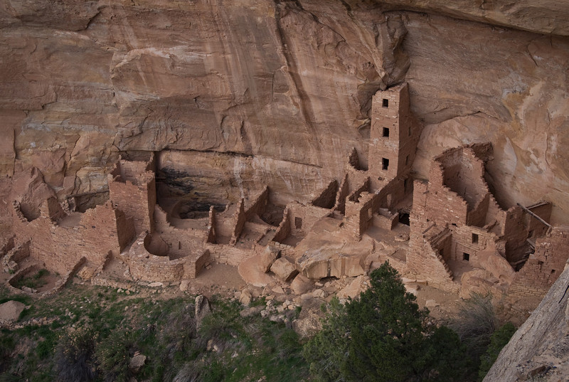 Notice the four-storey tower!  This is just one of many cliff dwellings in Mesa Verde National Park.