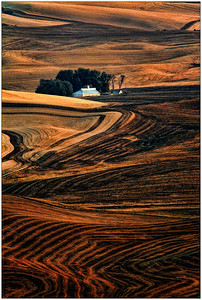 Palouse area, WA