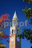 DSC_0277 Bell Tower upper v2