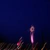 Fireworks 2011 by Richard Lazzara :   0363