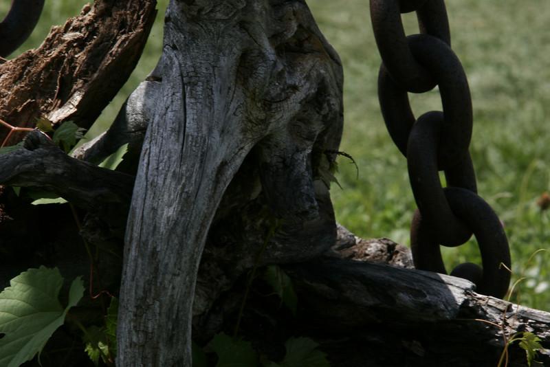 Interesting chain thing