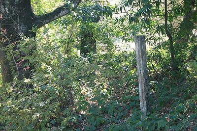 Upper Stevens Creek County Park