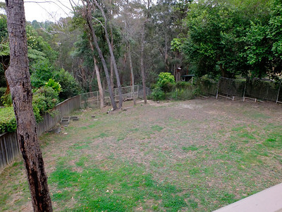 Backyard - would need to terrace/build retaining walls to flatten