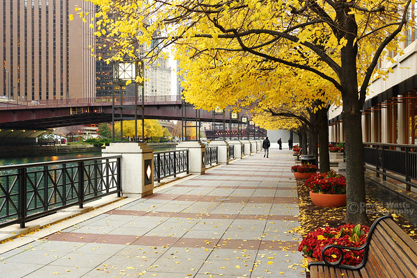 Riverwalk in Autumn