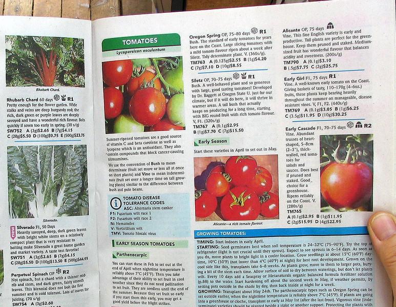 Sharon begins the season reading the West Coast Seeds catalogue.