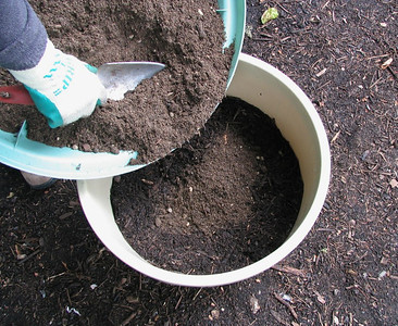 Place potting soil and fertilizer mixture on top of compost.