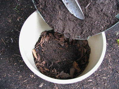 Place compost on your drainage layer at the bottom of the container.