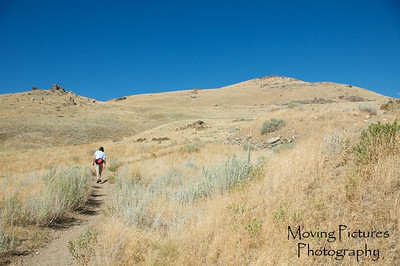 Antelope Island hike