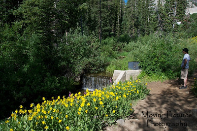 Brighton Lakes trail - near Lake Mary; Big Cottonwood Canyon, near Salt Lake City, Utah
