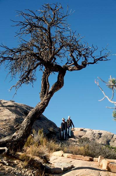 Phil and Susan at the natural bridges drive-through tour in Utah.