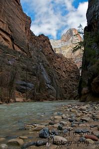 Zion National Park - Riverside Walk