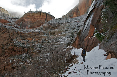 Zion National Park - Observation Point Trail