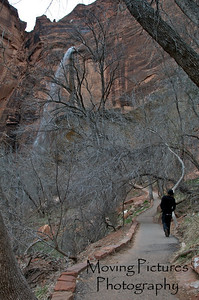 Zion National Park - Weeping Rock Trail