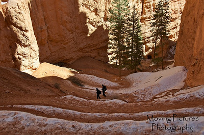 Bryce Canyon National Park - Navajo Loop Trail