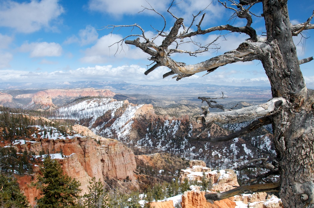 Bryce Canyon National Park - Piracy Point