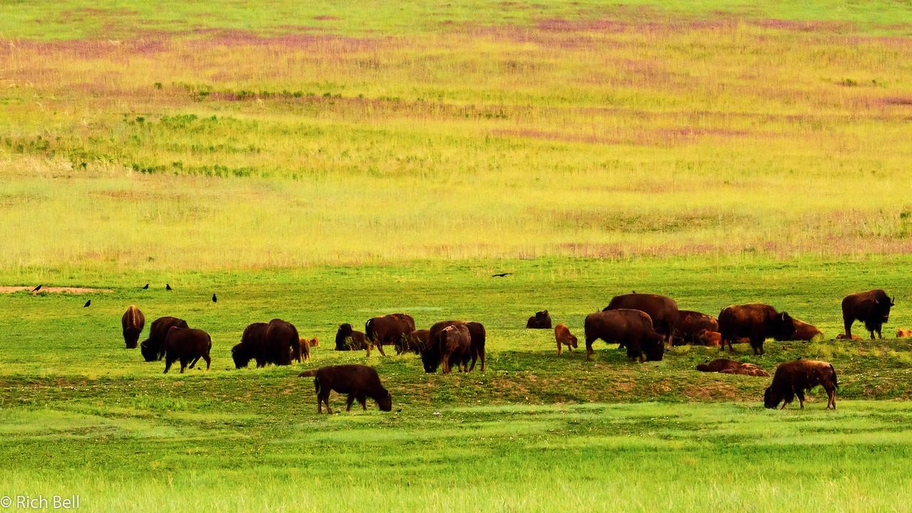 20110617 Utah -0358
