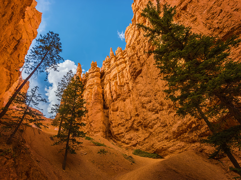 The view from the bottom of Bryce Canyon