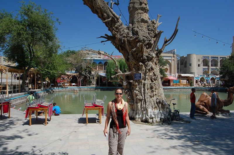 Em at Labi Haus, an ancient water feature in Bukhara surrounded by Madrahssas and Caravanserrais and two 700 year old Mulberry trees.