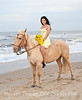 VB-Horse_052
