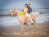 VB-Horse_057