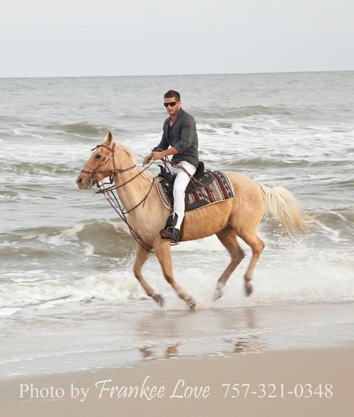 VB-Horse_012