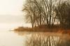 November Day, Black Dog Lake