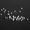 Sailboat Races/ Square Format