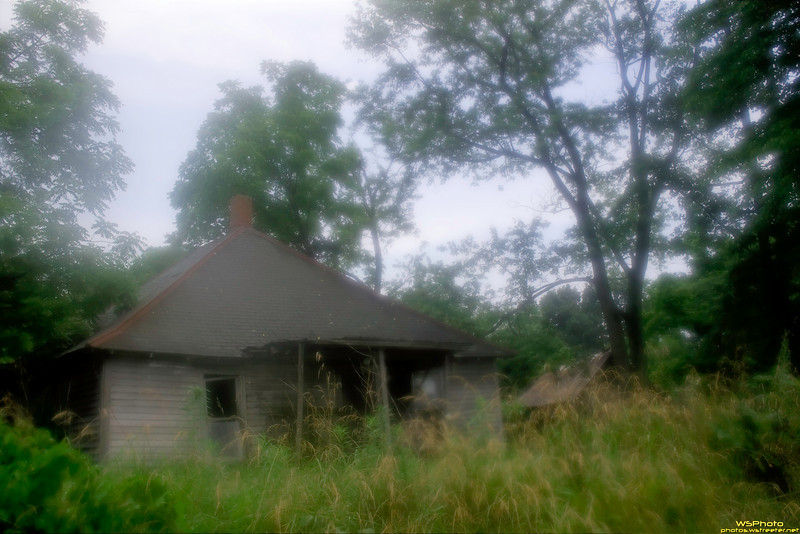 Abandoned Too<br /> <br /> Saw this abandoned house down near Salem, IN on our way to Beck's Mill. Temp was high along with the humidity (had just stopped raining) so when I got out of the van to take a couple shots everything including my optics fogged up. I was pretty upset about it at the time. However, I liked the softness and mood of this shot so decided to go ahead and post it.