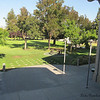 View of Central Park from the upper floor at Santa Clara Library