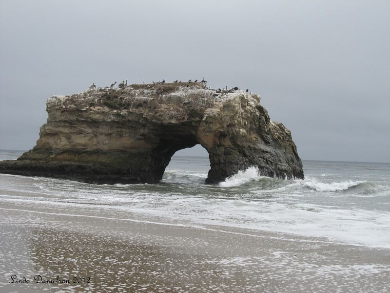 Natural Bridges State Beach, 2012