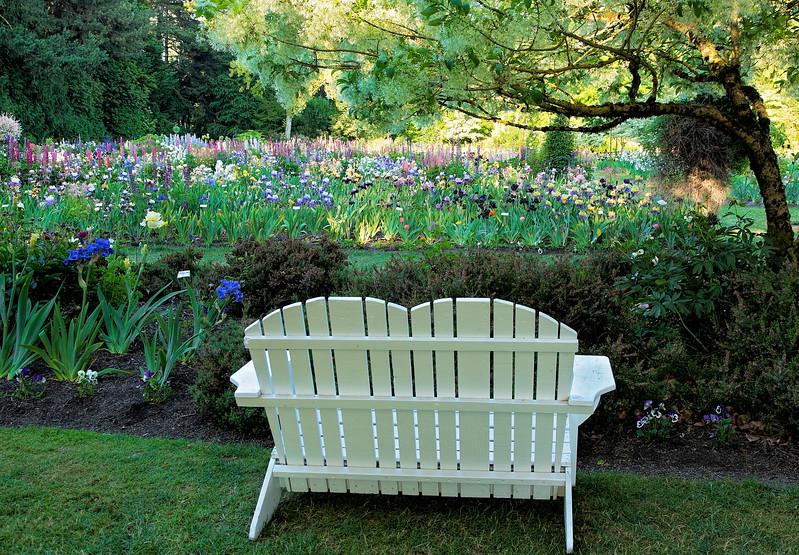 Garden View (wider)
