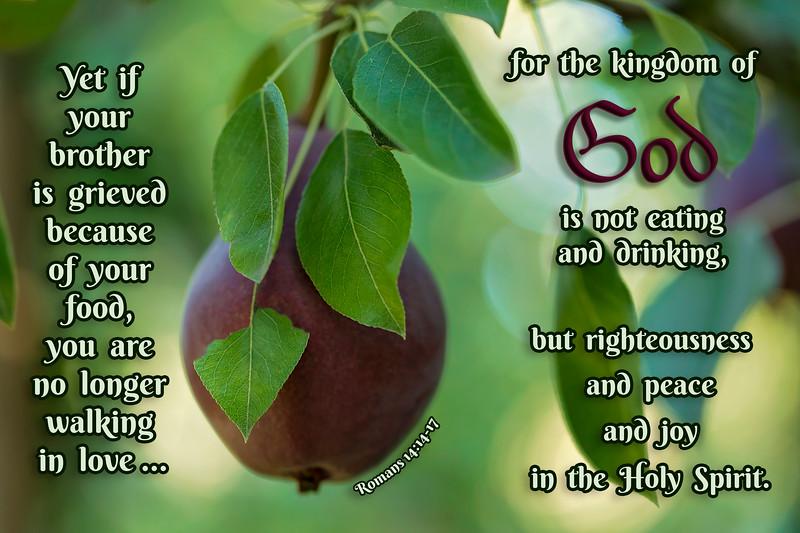 Bible verse, version 2, full verse