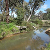 A lovely creek outside Beechworth, Victoria in October 2013